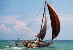 Orü sailing, Negombo, Sri Lanka.
