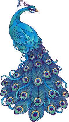 Correo: Rosario Diaz Carreon - Outlook Peacock Decor, Peacock Bird, Peacock Room, Peacock Feathers, Peacock Colors, Feather Clip Art, Peacock Coloring Pages, Peacock Images, Peacock Drawing Images
