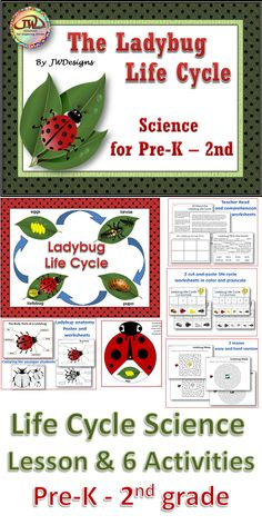 This is a Life Cycle science pack with posters, a lesson, comprehension worksheet, life cycle ording cut-and-paste, insect part labeling, ladybug coloring, life cycle craftivity, and mazes.  There are two levels of activities - a pre-k/k level and a 1st/2nd grade. If you are looking for a more comprehensive unit, I also have the life cycle unit that includes math and ELA activities and centers. Homeschoolers too! $