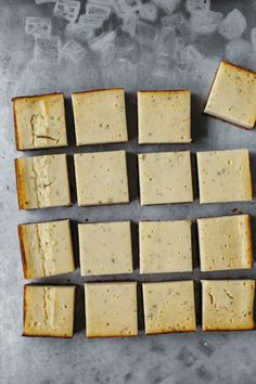 AGED HAVARTI AND THYME CHEESECAKE BARS//my name is yeh