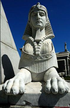 Brunswig Sphinx | Flickr - Photo Sharing!