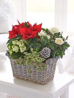 white rose,white kalanchoe, red poinsettia and variegated ivy.