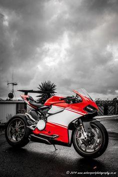 Ducati Superleggera. #127. Photo by Wayne Cockburn. www.motorsportphotography.co.nz or https://www.facebook.com/motorsportphotographynz