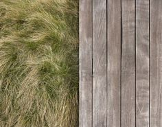 Contrasting texture of wooden deck and wild grass Stock Photo