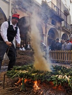 """Calçots in Catalonia, where they know their onions. The 'calçotada' is a Catalonian culinary ritual like no other"".  Written by Chloe Scott-Moncrieff  8 March 14, THE INDEPENDENT : ""The calçot must measure 15-20cm and is distinctively sweet, cooked on flames. It also has PGI (Protected Geographical Indication). And it is seasonal. Only from December to early May can the calçot fires and the feasting, which date back 100 years, be found in restaurants and homes across the region."""