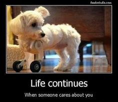 Life Continues When Someone Cares About You