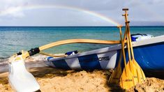 Maui Paddle Sports, Lahaina: See 692 reviews, articles, and 193 photos of Maui Paddle Sports, ranked No.9 on TripAdvisor among 116 attractions in Lahaina.