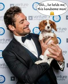 David Gandy at the Battersea Dogs & Cats Home's Annual Collars and Coats Gala, 3 Nov, 2016  in London