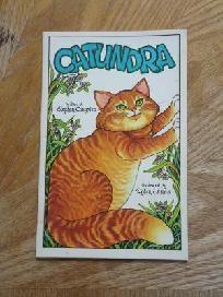 Catundra - A Serendipity Book by Stephen Cosgrove