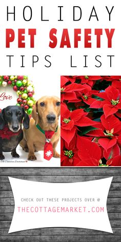 Holiday Pet Safety Tips List - The Cottage Market #KeepYouPetsSafe, #HolidayPetSafetyList, #HolidayPetSafetyTips