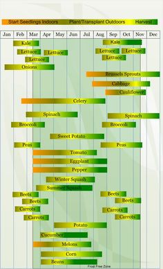Zone 8 Vegetable planting calendar describing approximate dates to start vegetable plants indoors and outdoors relative to specific USDA Plant Hardiness Zones.
