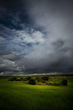 Landscapes by Diego Berro Studio , via Behance