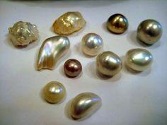 Entre el Caos y el Orden: Perlas: tipos, características y ...