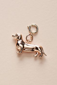 Dachshund Breed of Dog Matching LanyardKeyring Key RingBookmark