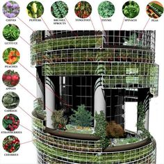 Urban Gardening and Farming of the Future!