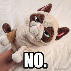 Grumpy Cat Puppet | 23 Products For Anyone Who's Feeling Stressed Out