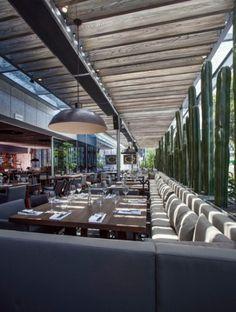 Sonora Grill Insurgentes - Noticias de Arquitectura - Buscador de Arquitectura