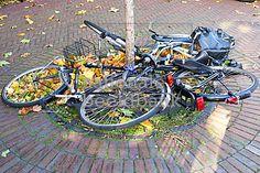 fietsen zijn omgewaaid door de herfststorm