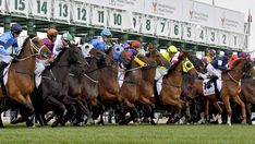 2011 Melbourne Cup – Australia's Most Anticipated Horse Racing Event Lund, Melbourne Cup, Event Photography, Stay Fit, Chill, Racing, Horses, Joseph, Stuff To Buy
