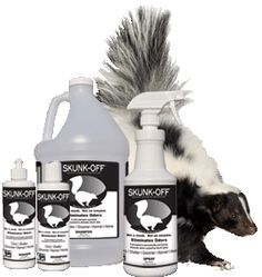 Skunk Off-best skunk removal for animals, home too!  I have personally used it!!!