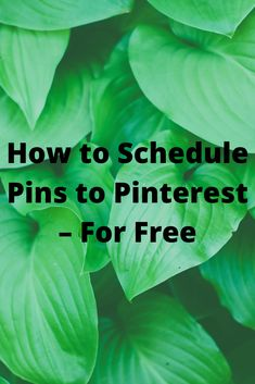 Scheduling of Pins
