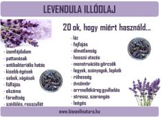 A levendula illóolaj jótékony hatásai Holistic Healing, Natural Healing, Herbalife, Doterra, Food Hacks, Good To Know, Nalu, Healthy Lifestyle, Health Care