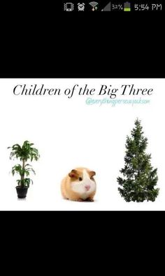 The Children of the Big Three.------> this is awesome. Repin if you get it.