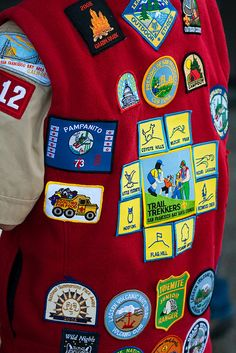 Cub Scout Brag Vest.  DIY in felt or fleece and the boys can finish the arm seams and add a button for Tiger Elective #18.
