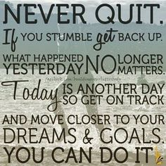 If you keep going; if you keep trying, there is no guarantee you are going to succeed.  If you quit, I guarantee you won't.