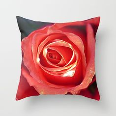Romantic roses(6). Throw Pillow#pillows #society6 #nature #flowers #maryberg #homedesign #throwpillow #sofa #salon  #decorative #textile #rose #coral #purple  #gold