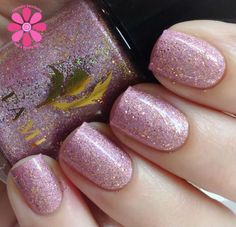 Tami Nail Polish Scottish Showcase Collection Swatches & Review   Cosmetic Sanctuary