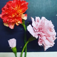 #paperflowers #paperflorist #paperartist #paperart #art #flowers #carnation #instabeauty #instadaily #diy #crafts #badmoods #loneliness