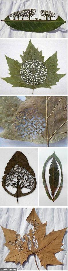 Çeşitli materyalleri değerlendirme, kullanır hale getirme ayrıca sanatsal bir bakış açısı kazandırma üzerine ilginç ve değişik çalışmalar..