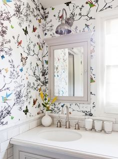 Top wallpaper schumacher birds butterflies photo via domaine by amy bartlam