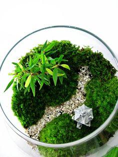 Asian Landscape Garden Terrarium with Miniature door DoodleBirdie