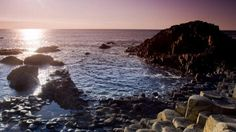 Giants Causeway - Visitor information - National Trust