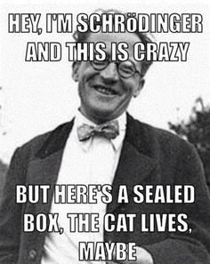 Schroendinger's cat, meet #callmemaybe.    Yep, that just happened. OR DID IT?