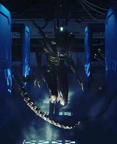 Alien Vs Predator, Alien Isolation, Aliens Movie, Xenomorph, Real Women, Movie Tv, Bug Hunt, Sci Fi, Character Design