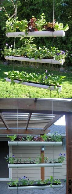 DIY Outdoor Vertical Garden ideas