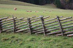 Datei:Zeltschach - Zaun.JPG