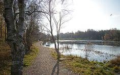 Vandra runt mossen. Svarte mosse, Länsmansgården, Göteborg