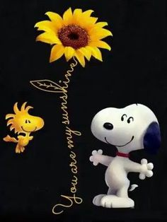 Brrr so kalt - Charlie Brown Quotes, Charlie Brown And Snoopy, Snoopy Images, Snoopy Pictures, Snoopy Und Woodstock, Snoopy Wallpaper, Wallpaper Animes, Snoopy Quotes, Peanuts Quotes