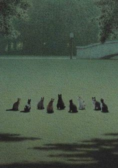 """""""Frohe Ostern"""" by Michael Sowa, perhaps the most frightening Easter postcard of all time. Crazy Cats, Crazy Cat Lady, I Love Cats, Witchcraft, Michael Sowa, Secret Meeting, Nocturne, Warrior Cats, Here Kitty Kitty"""