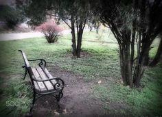 solitude - null