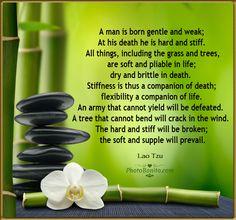 Stiffness is a companion of death
