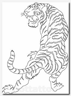 Roaring tiger tattoo design is part of Wonderful Old School Roaring Tiger Head Tattoo Design - rib cage tattoos white tiger Tattoo ideas for Women Tiger Tattoo Drawing Tiger Sketch, Tiger Head Tattoo, Cage Tattoos, White Tiger Tattoo, Picture Tattoos, Traditional Tattoo, Tattoo Drawings, Tiger Drawing, Ribcage Tattoo