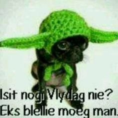 'Isn't it Friday yet:? I'm freakin' tired man! Tired Man, Weekday Quotes, Goeie Nag, Afrikaans Quotes, Winter Hats, Crochet Hats, African, Funny Things, Van