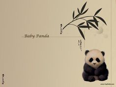 Google Image Result for http://images.fanpop.com/images/image_uploads/Baby-Panda-wallpaper-pandas-631180_800_600.jpg