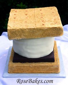 A Giant Smore's Cake!  This cake is almost entirely chocolate... chocolate cake, chocolate brownie and chocolate fondant... plus some brown sugar buttercream and homemade marshmallow fondant!  Click over for details!!