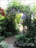 The Vine Arch by Agriframes is a deep Monet style arch
